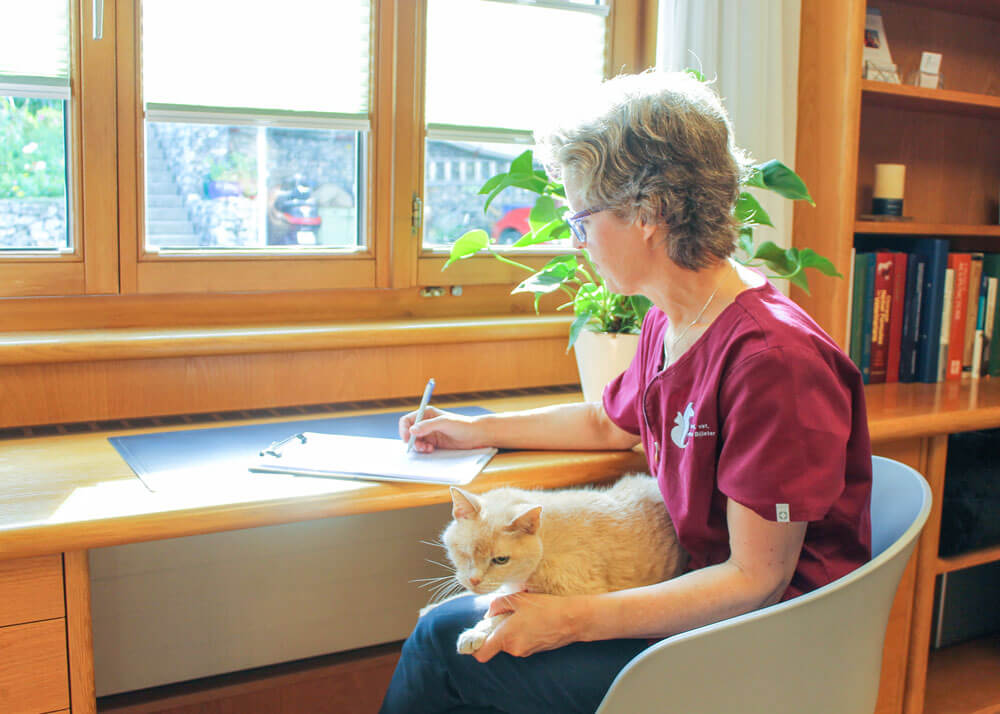 Simona Billeter stellt eine Diagnose am Schreibtisch mit einer Katze auf dem Schoss